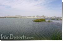 دریاچه هامون