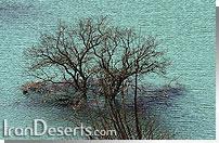 دریاچه امامزاده علی آب اسک
