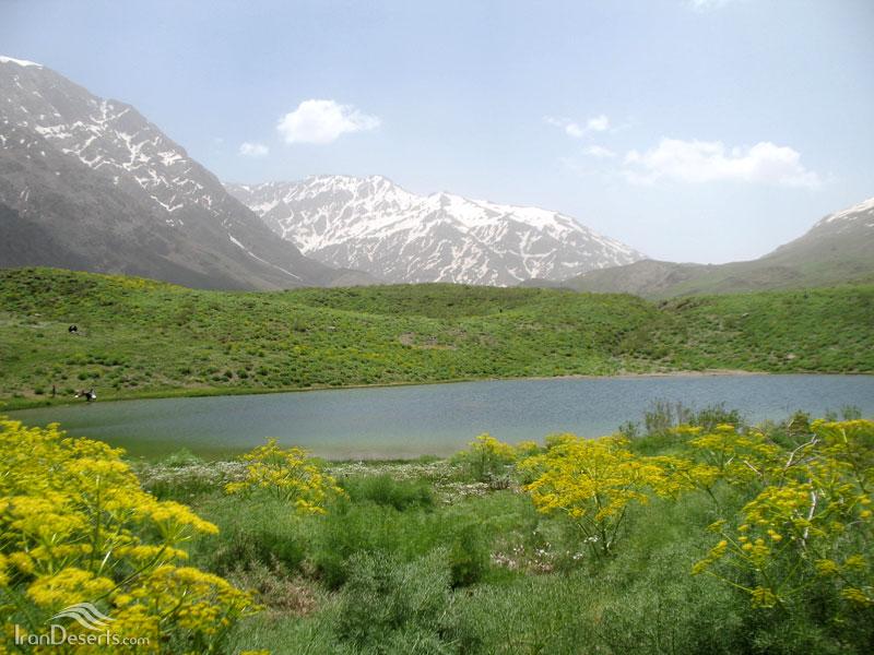 درياچه کوه گل