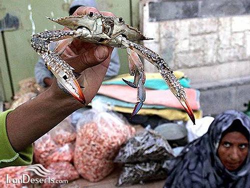 بازار ماهی – بندرعباس