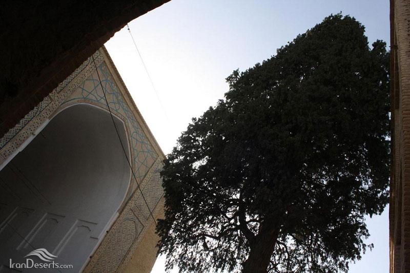 مسجد جمعه نی ریز