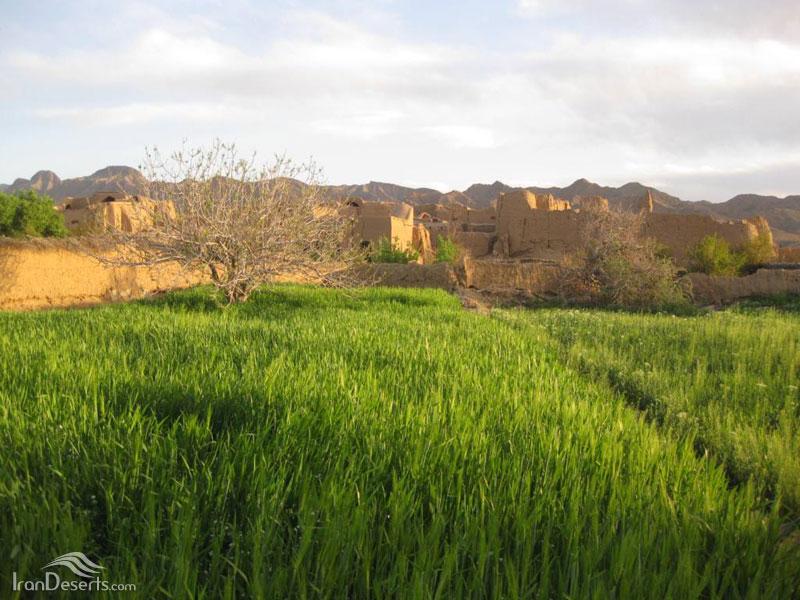 روستای هد، عکس از مریم حیدری