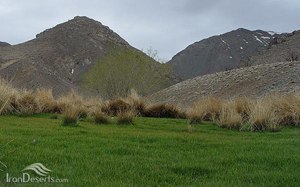 منطقه شکار ممنوع ریوند (جوین)، سبزوار