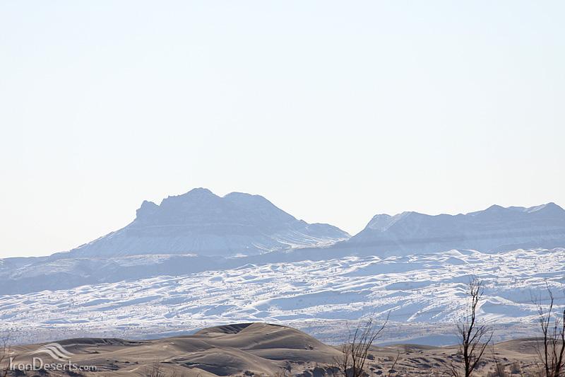 ریگ کله در زیر برف زمستانی
