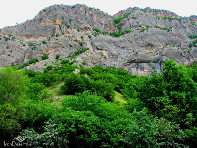 پارک ملی گلستان
