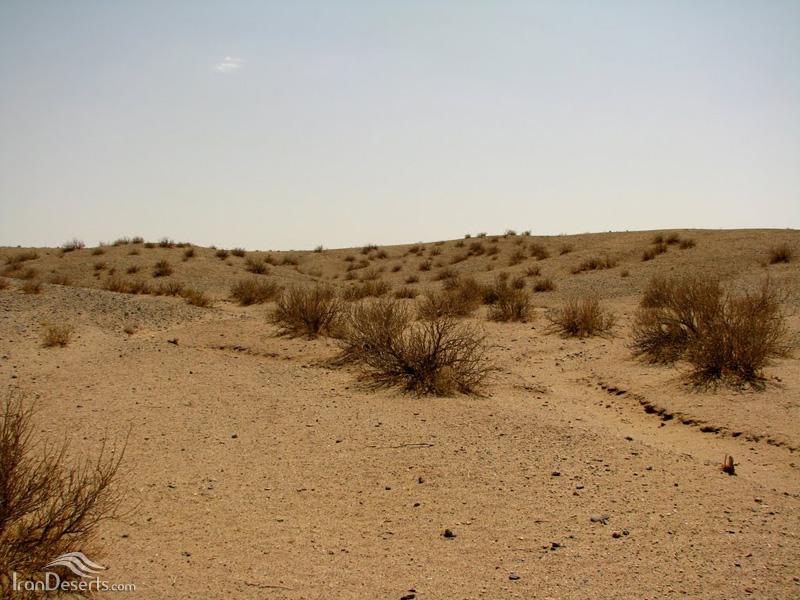 منطقه حفاظت شده توران (خارتوران)