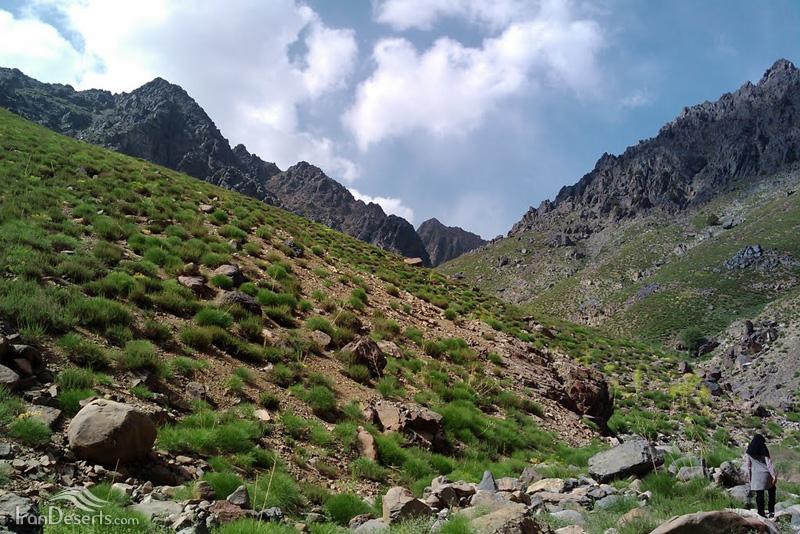 ارتفاعات کوه شاه، رابر