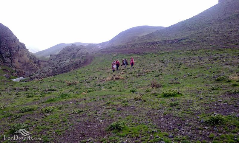 شیران دره سی (دره شیران)