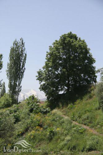 روستای پراچان، طالقان، تصاویر از سعید زبانی