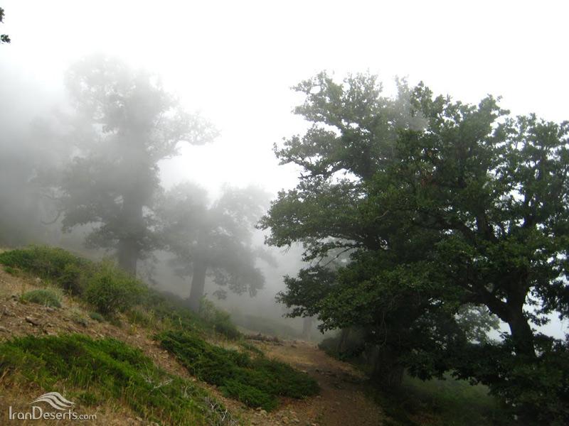 مسیر آبشارهای دره تل انبار، گرگان