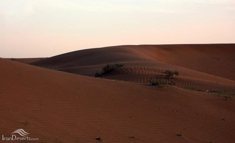 کویر ابوغویر، دهلران