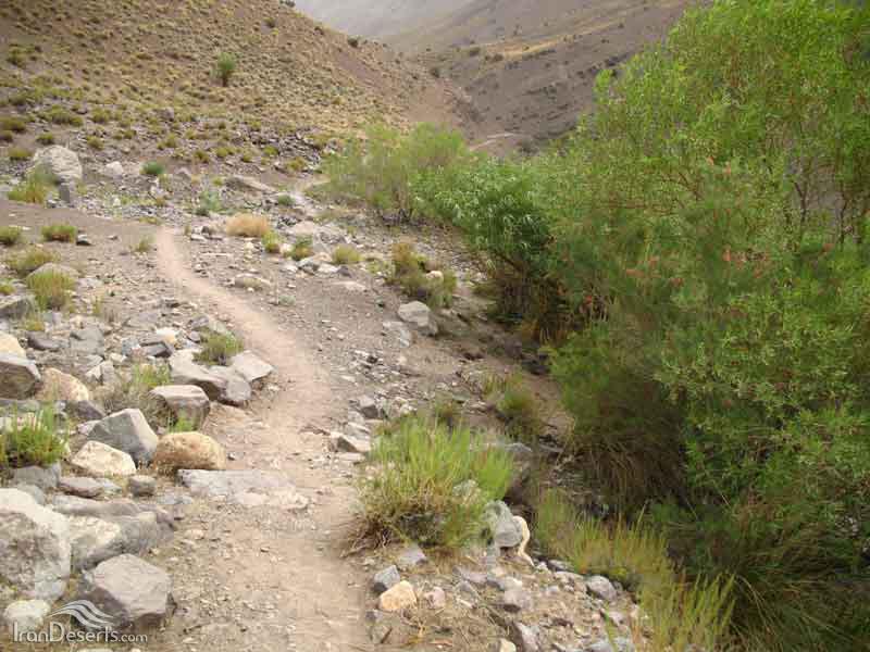 دره شنگستان (وامق آباد)، کرمان