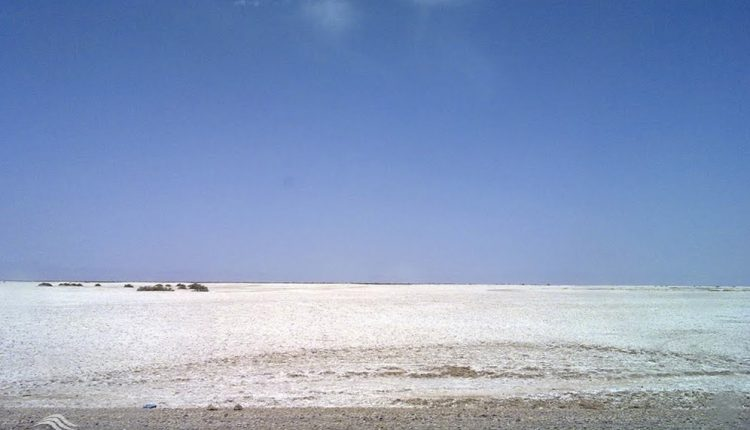دق تل حمید