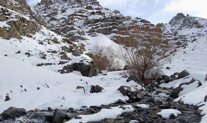 منطقه شکار ممنوع کهندان، قم، عکس از عباس علی میرزایی
