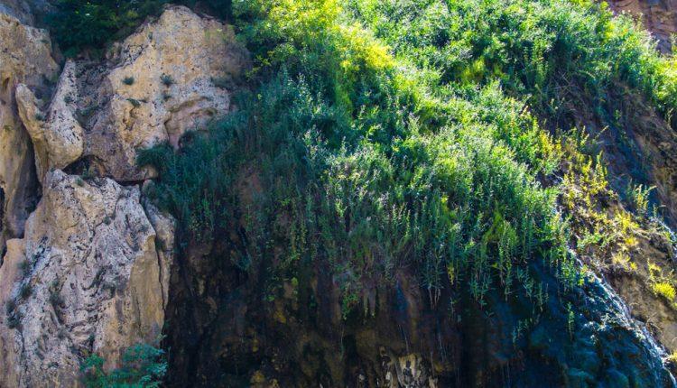 آبشار شرشر دره باغی